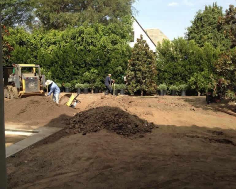 Tree removal services Image-3a Sacramento