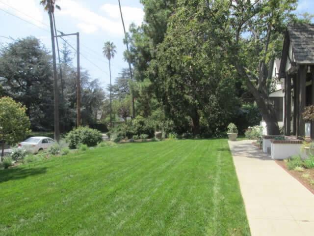 Tree removal services Image9 Sacramento