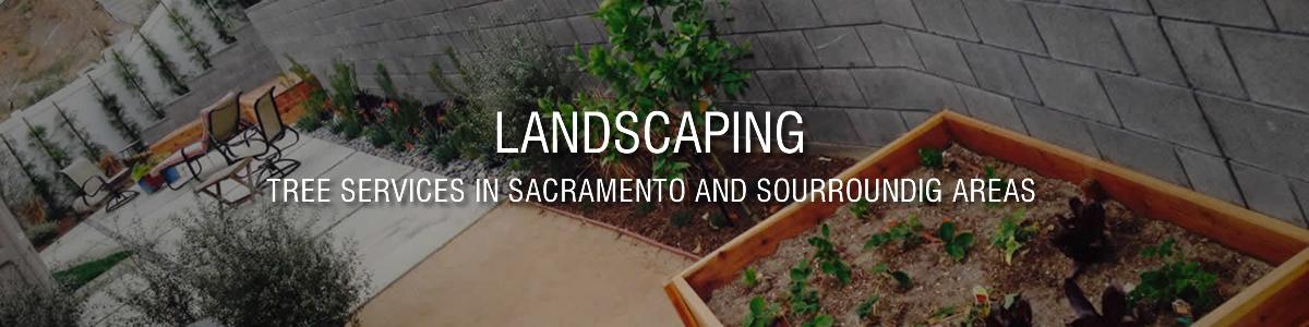 Landscaping Service in Sacramento